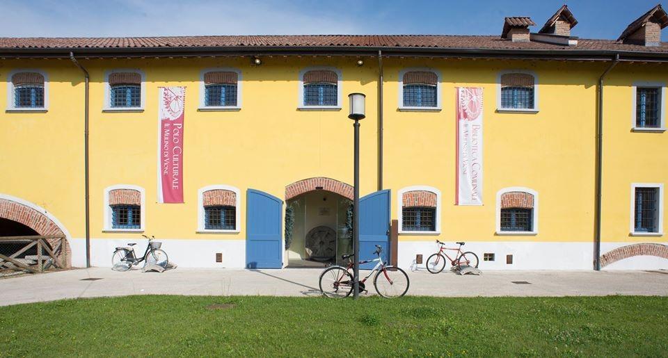 biblioteca di Vione